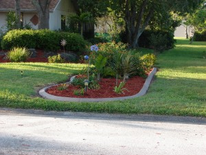 lawn service  bradenton